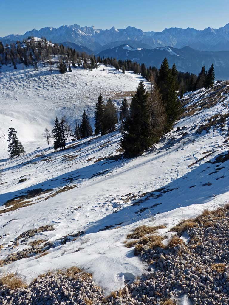 schnee baeume berge dobratsch