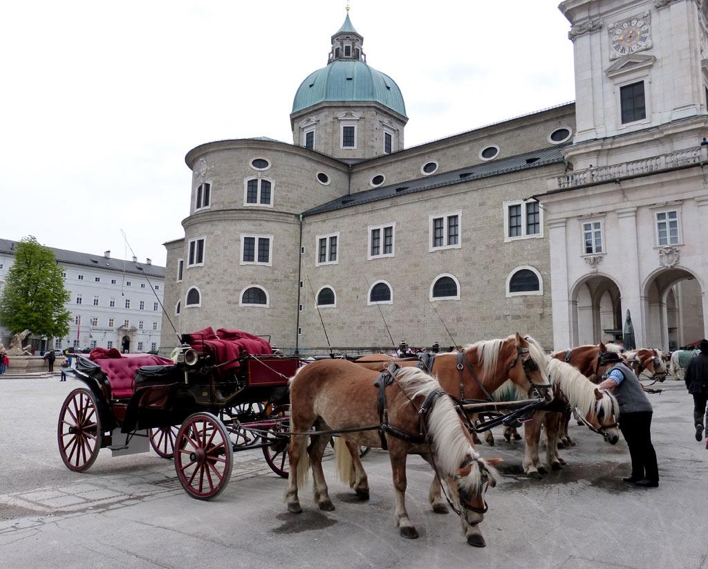 Pferde Kutschen Salzburger Dom