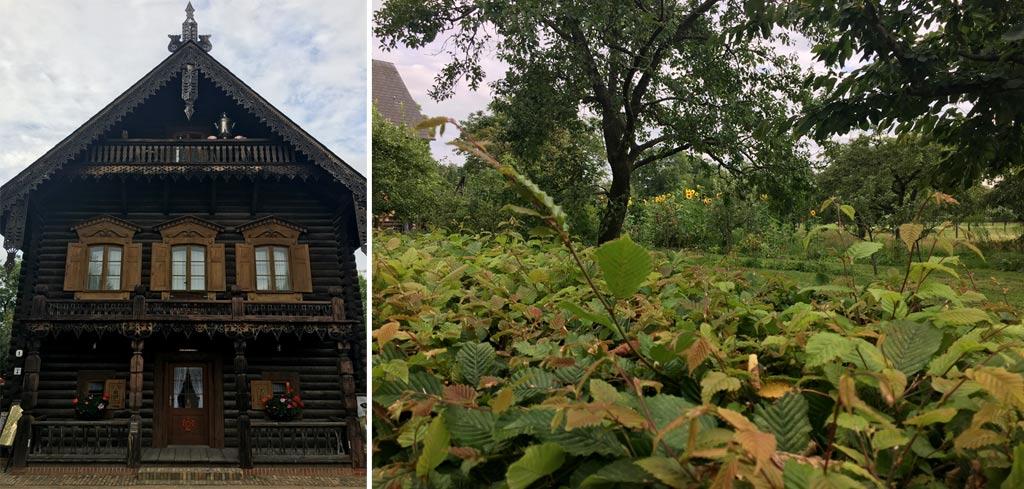 Haus Hecke Potsdam Alexandrowska