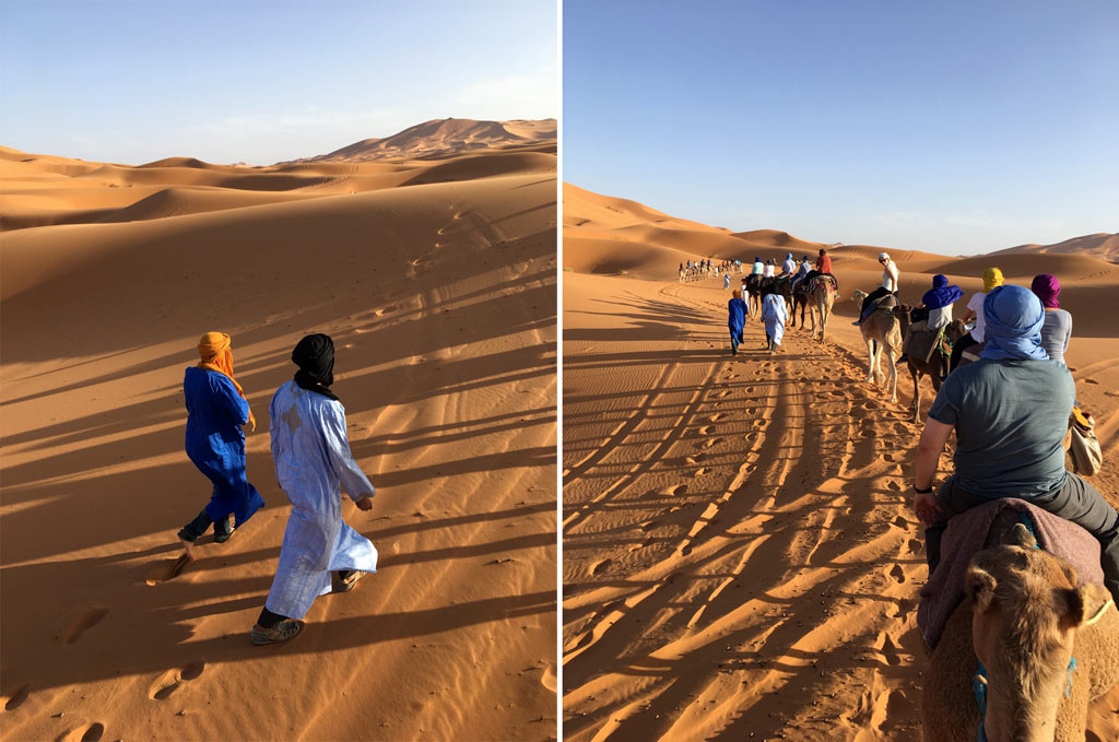 Marokko Wüste Kamele Gruppe