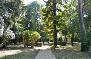Green nature spot in Venice Parco Savignon