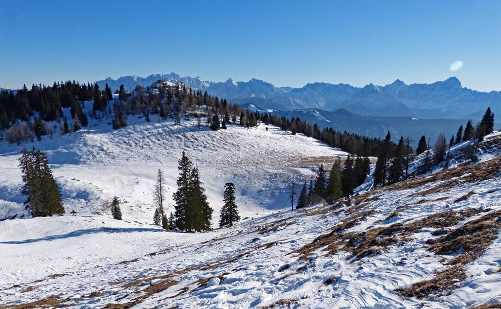 aussicht auf schnee baeume und berge dobratsch