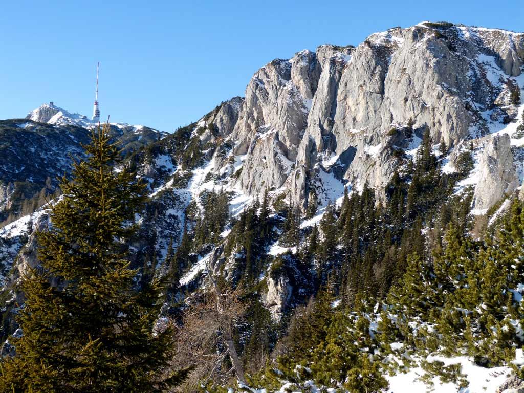 baeume und berg dobratsch