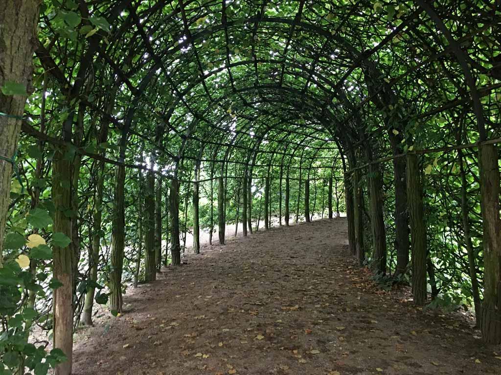 Pflanzentunnel Potsdam Belvedere
