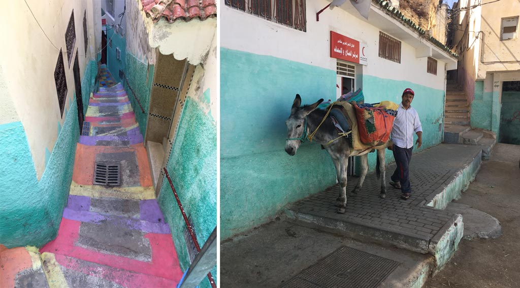 Bunte Straße Esel Moulay Idriss